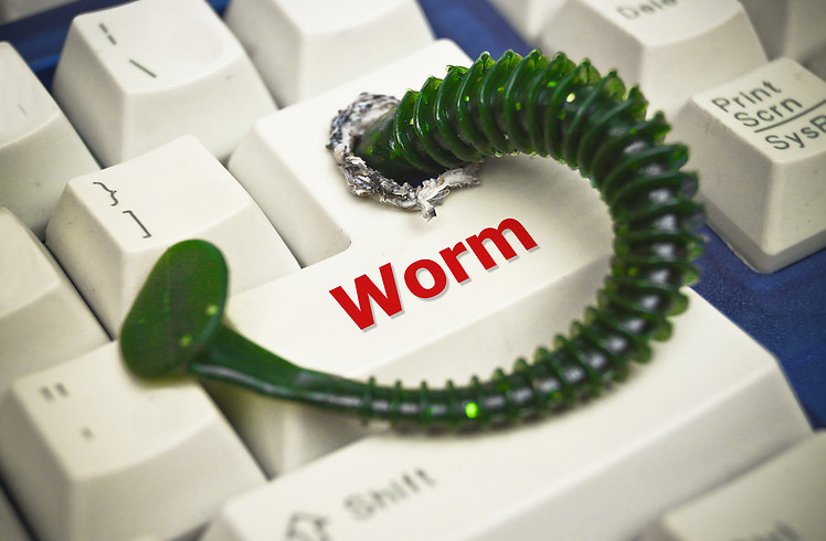 What are Computer Worms? How to prevent your device from Computer Worms?
