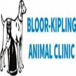 Bloor Kipling Animal Clinic Profile Picture