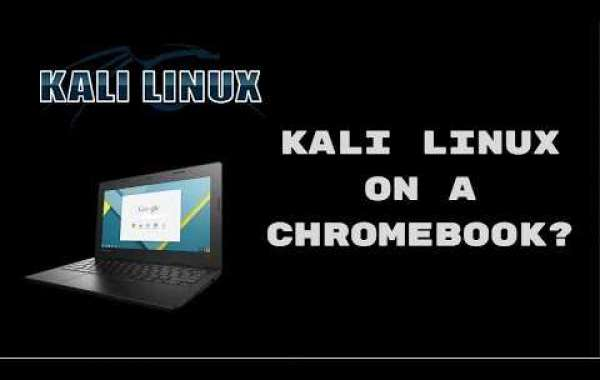 How to Install Kali Linux on a Chromebook