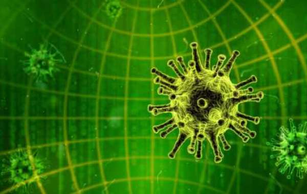 7 Common Computer Viruses and How to Remove Them
