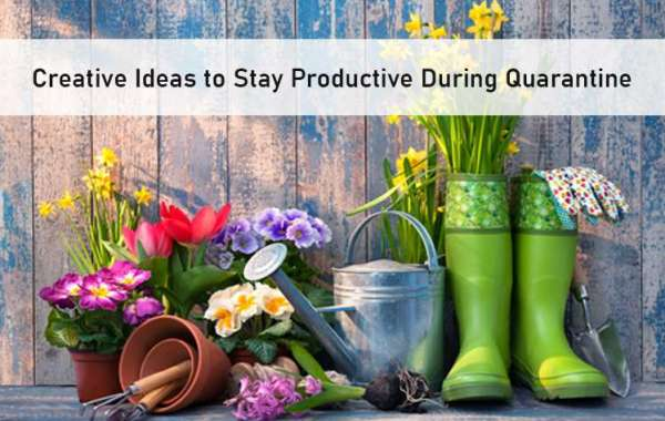 5 Creative Ideas to Stay Productive During Quarantine
