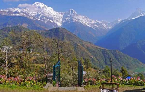 Looking for a complete guide for Mount Everest Base Camp Trek