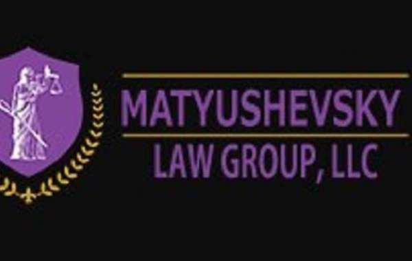 Professional Lawyer Services by The Matyushevsky Law Group
