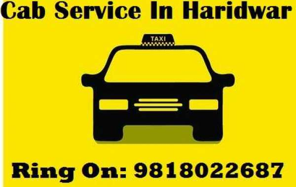 Taxi Services to Travel Pink City