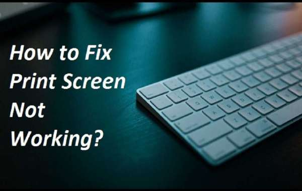 How to Fix Print Screen Not Working?
