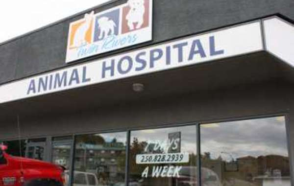 Specialized Care for Animals of All Ages