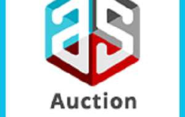 Silent Auction Software- Some of the Main Characteristics That You Need to Check