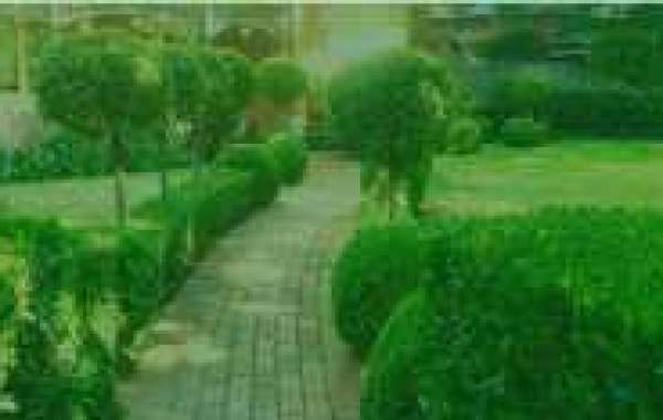 Superior Landscaping Design And Irrigation System Installation For Gardens