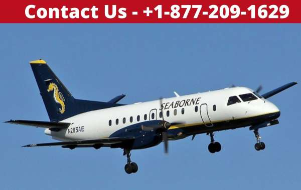 Seaborne Airlines Reservations with contactforsupport