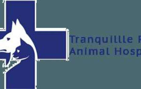Quality Pet Care by the Friendly and Caring Staff
