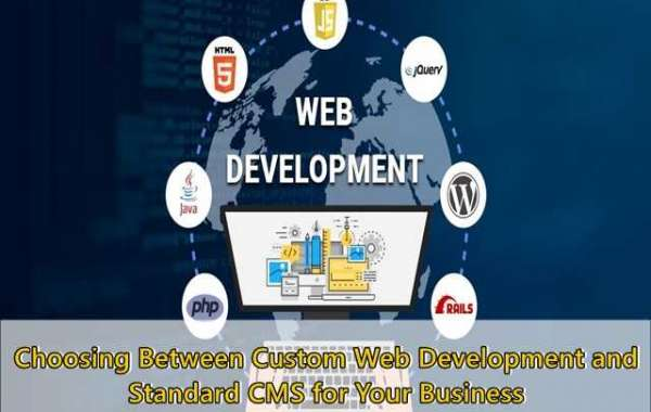 Choosing Between Custom Web Development and Standard CMS for Your Business