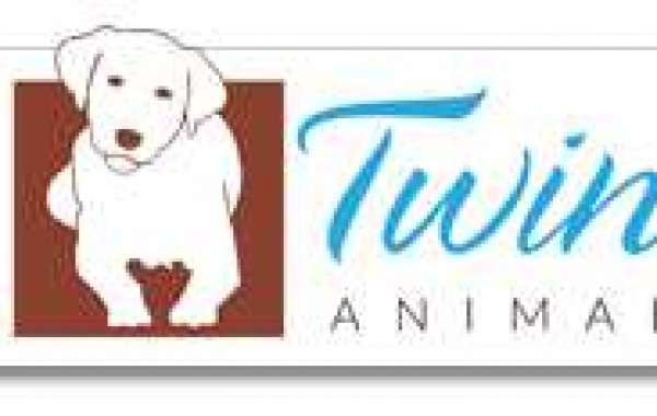 Your Trusted Veterinary Clinic In Kamloops